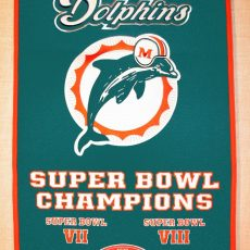Miami Dolphins Super Bowl Champs | Nfl Miami Dolphins, Miami with Miami Dolphins Super Bowl Victories