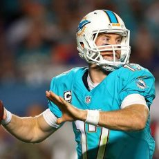 Road To Super Bowl 50: Dolphins with Miami Dolphins In Super Bowl