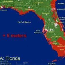 Art Basel Miami || Flood : Art Basel Map throughout Miami Beach Elevation Map