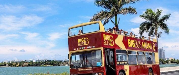 What'S Your Favorite Way To Explore The City Of Miami? ☀️🌴 throughout Miami Big Bus Map